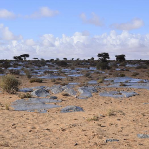Site de Laghchiwat, Maroc