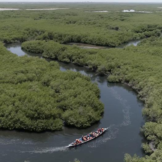 vie secrete-des-mangroves