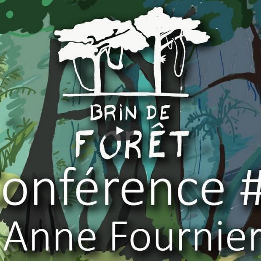 Brin de forêt - Anne Fournier
