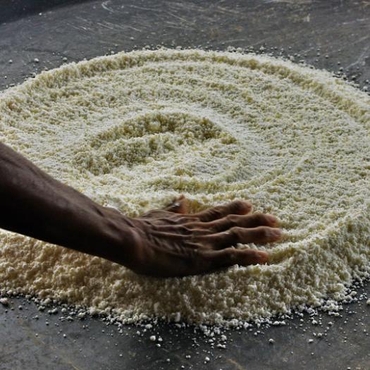 préparation galette de manioc, Rio Negro